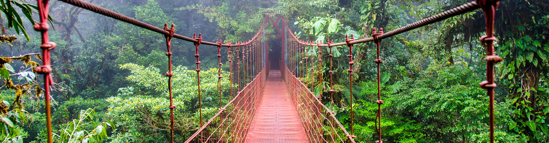 Costa Rica: Tropical Ecology