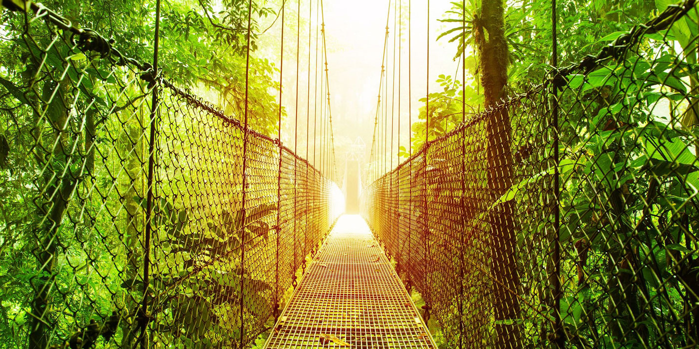 Costa Rica: Biology 13 Days