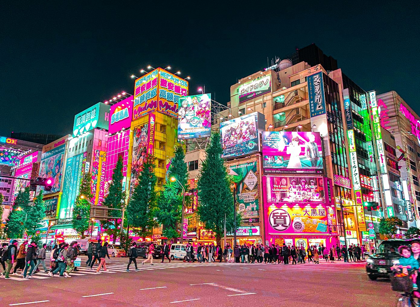 Japan Lifelong Learning